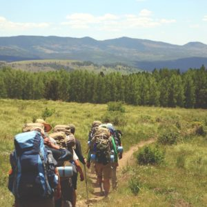 Bear Aware - Hiking in Bear Country Course by St John Ambulance